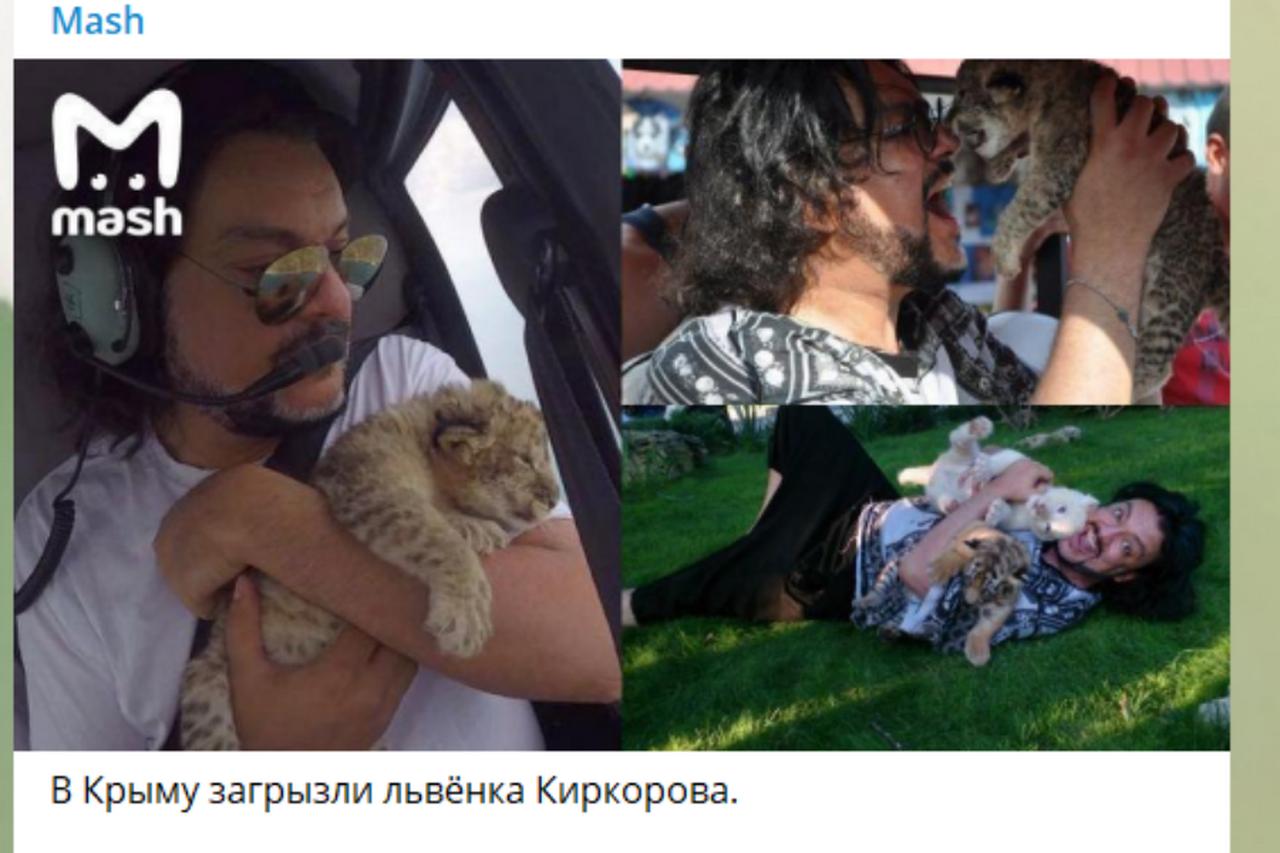 В Крыму львы загрызли подопечного Киркорова